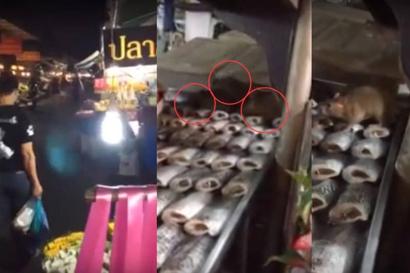 屋台で陳列されている魚の上を歩き回るネズミの映像がSNS上で話題に