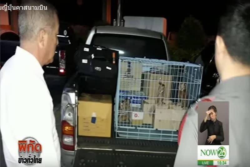 【動画】野生動物を密輸しようとした容疑で、ドンムアン空港で日本人逮捕