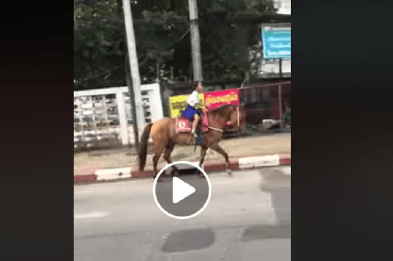 タイの町中を馬に乗った少女が駆け抜ける!