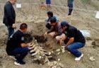 タイ最新ニュース~大昔のクジラの化石発見&パタヤのコンド強制撤去