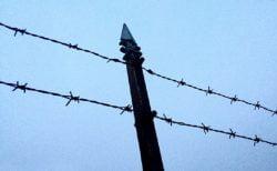 タイ刑務所の職業訓練に星占いコース&誘拐犯、SNSの協力で発見