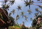 タイのホテルが中国資本に乗っ取られる?!