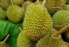 コロナ禍にも関わらずタイのフルーツ輸出が増