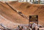 ギネスブックに新しく認定?世界一長いタイの石化丸太
